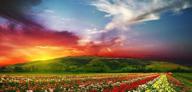 Чем шире человек смотрит на жизнь, тем в большей степени он способен видеть и понимать как себя, так и других людей.